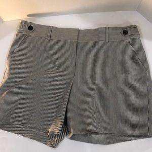 NWT Ann Taylor shorts